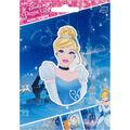 Disney Princess Cinderella Iron-On Applique