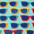 Blizzard Fleece Fabric -Sunglass Fun