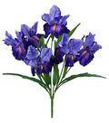 Fresh Picked Spring 22\u0027\u0027 Iris Bush-Purple
