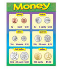 Money Learning Chart 17\u0022x22\u0022 6pk