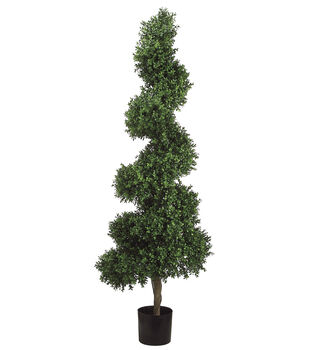 Spiral Boxwood Topiary in Plastic Pot 5.5'