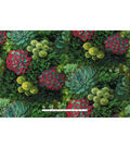 Anti-Pill Fleece Fabric -Realistic Desert Succulents