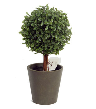 Bloom Room 11'' Soft Touch Boxwood Topiary-Green
