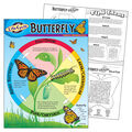 Life Cycle of a Butterfly Learning Chart 17\u0022x22\u0022 6pk