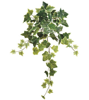 Bloom Room 22'' Ivy Leaf Bush
