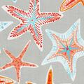 P/K Lifestyes Outdoor Fabric 54\u0022-Stars Collide Pewter