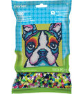 Perler Beads & Pattern Kit-Rainbow Terrier