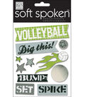 Me & My Big Ideas Soft Spoken Embellishments-Volleyball