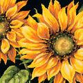 Dimensions 14\u0027\u0027x14\u0027\u0027 Stitched in Wool Needlepoint Kit-Dramatic Sunflower