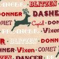 Snuggle Flannel Fabric -Reindeer Names