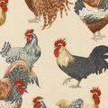 Upholstery Fabric 54\u0022-Aria Black Bird