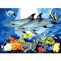 15-1/4\u0022x11-1/4\u0022 Junior Paint By Number Kit-Dolphins
