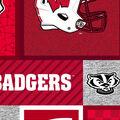 Wisconsin Badgers Fleece Fabric-College Patches