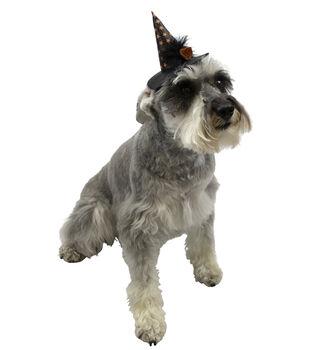 Maker's Halloween Pet Accessory-Witch Hat Small/Medium
