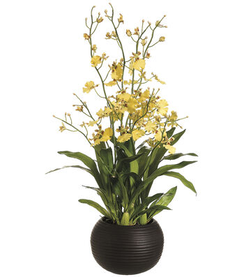 Bloom Room Luxe 38'' Dancing Orchid Plan-Yellow