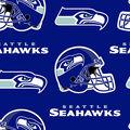 Seattle Seahawks Fleece Fabric -Logo