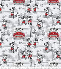 Disney Mickey and Minnie Fleece Fabric-Vintage Romance