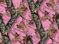 Mossy Oak Pink -Mossy Oak Pink