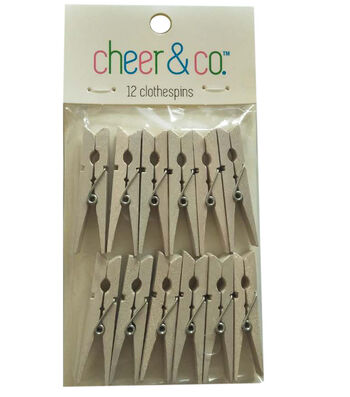 Cheer & Co. 12 pk Small Clothespins-White
