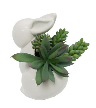 Fresh Picked Spring White Bunny with Succulent Arrangement