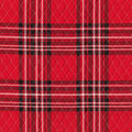 Double Faced Quilt Fabric-Red & Black Checks & Plaid