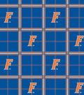 University of Florida Gators Flannel Fabric 42\u0022-Plaid