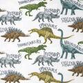 Anti-Pill Plush Fleece Fabric-Dinos And Words