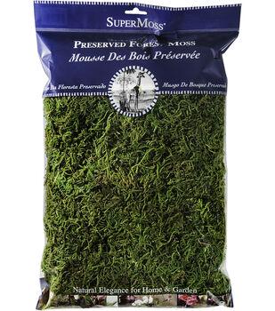 SuperMoss 8 oz. Preserved Fresh Forest Moss Bag-Green