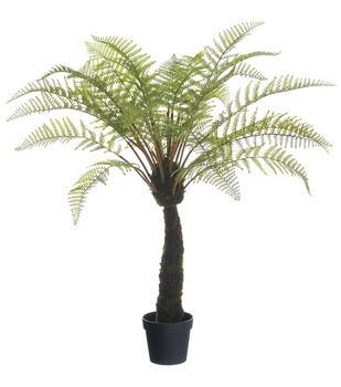 Forest Fern Plant in Plastic Pot 48''