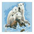 RIOLIS 23.5\u0027\u0027x15.75\u0027\u0027 10-count Counted Cross Stitch Kit-Polar Bears