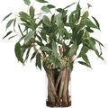 Eucalyptus & Driftwood in Glass Vase 35\u0027\u0027-Green