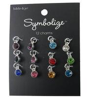 hildie & jo Symbolize 12 Pack Mini Round Silver Birthstone Charms, , hi-res