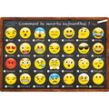 French Immersion Chart Emoji How Are You Feeling Today? 10pk