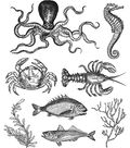 Tim Holtz Cling Stamps 7\u0022X8.5\u0022-Sea Life