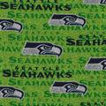 Seattle Seahawks Sweater Fleece Fabric