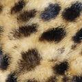 Faux Fur Fabric-Cheetah Luxe