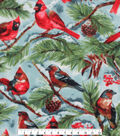 Christmas Anti-Pill Plush Fleece Fabric-Snow Cardinals on Blue