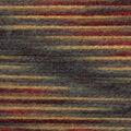 Lion Brand Yarn Wool-Ease Hand Dyed Yarn