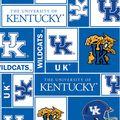 University of Kentucky Wildcats Fleece Fabric -Block