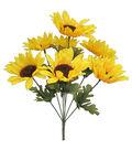 Blooming Autumn 15\u0027\u0027 Sunflower Bush-Yellow