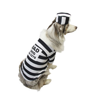 Maker's Halloween Pet Costume-Dog Pound Large