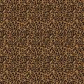 Eaton Square Multi-Purpose Decor Fabric 54\u0022-Otho/Gold