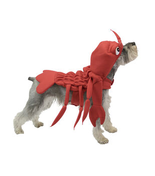 Maker's Halloween Pet Costume-Lobster Small