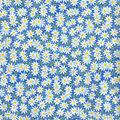 Keepsake Calico Cotton Fabric -Blue Packed Daisy