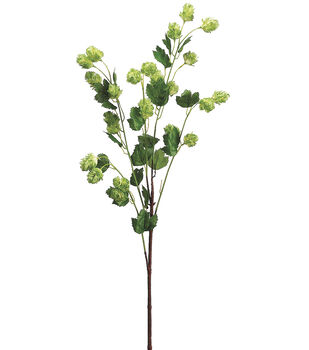 """Bloom Room 30"""" Hops Spray-Green"""