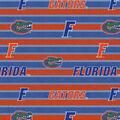 University of Florida Gators Fleece Fabric -Polo Stripe