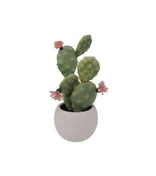 Fresh Picked Spring Desert Aura 11'' Cactus Arrangement-Green