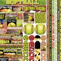 Reminisce-Softball Cardstock Stickers