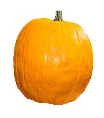 Fun-Kins Carvable Pumpkin Natiello-Orange
