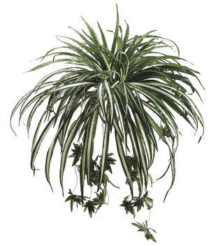"28"" Spider Plant"